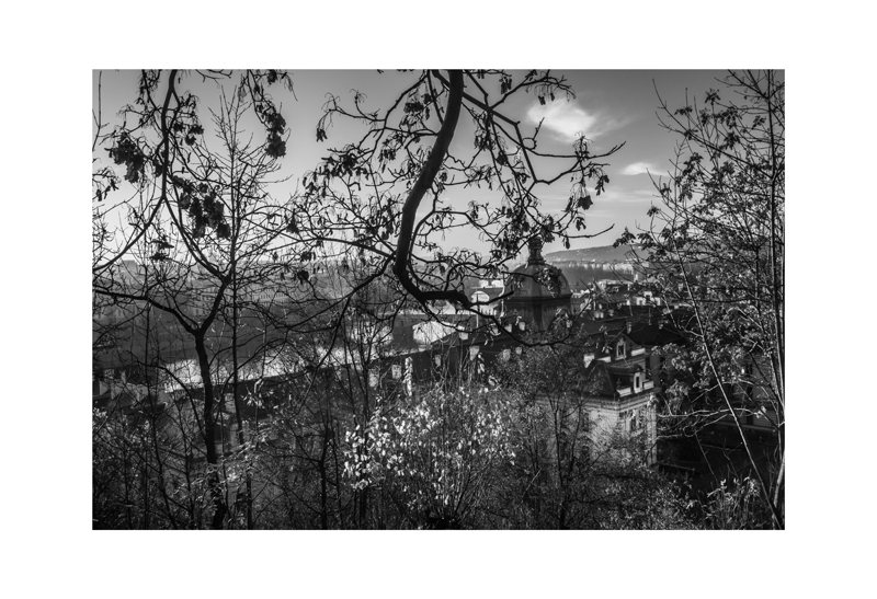 Above the Vltava.jpg