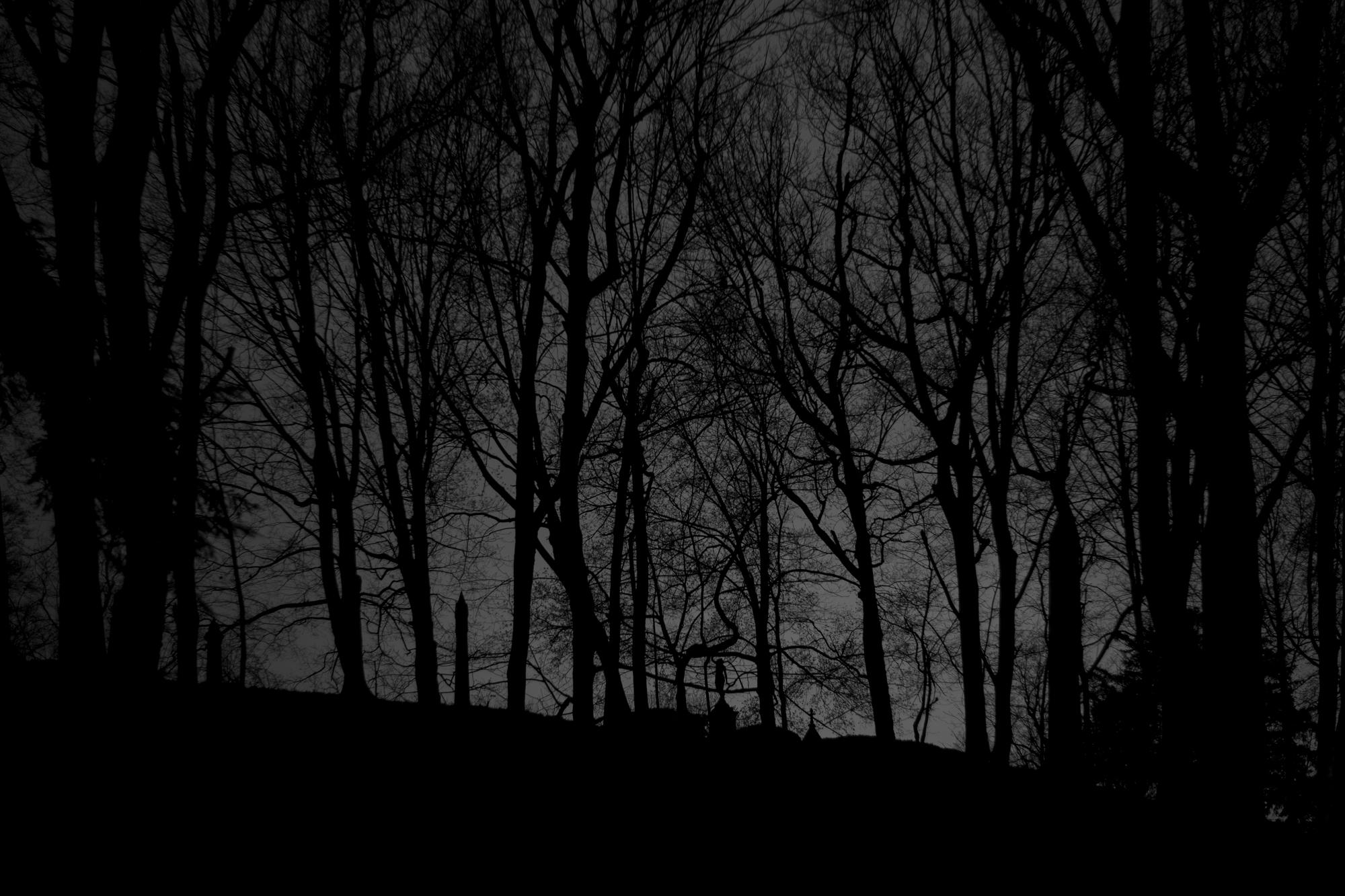 9N6A0105 Lake View Skylinre LP.jpg