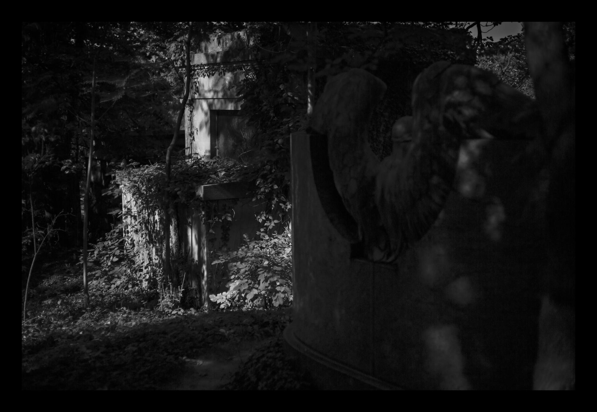 9N6A7830 Behind the angel LP.jpg
