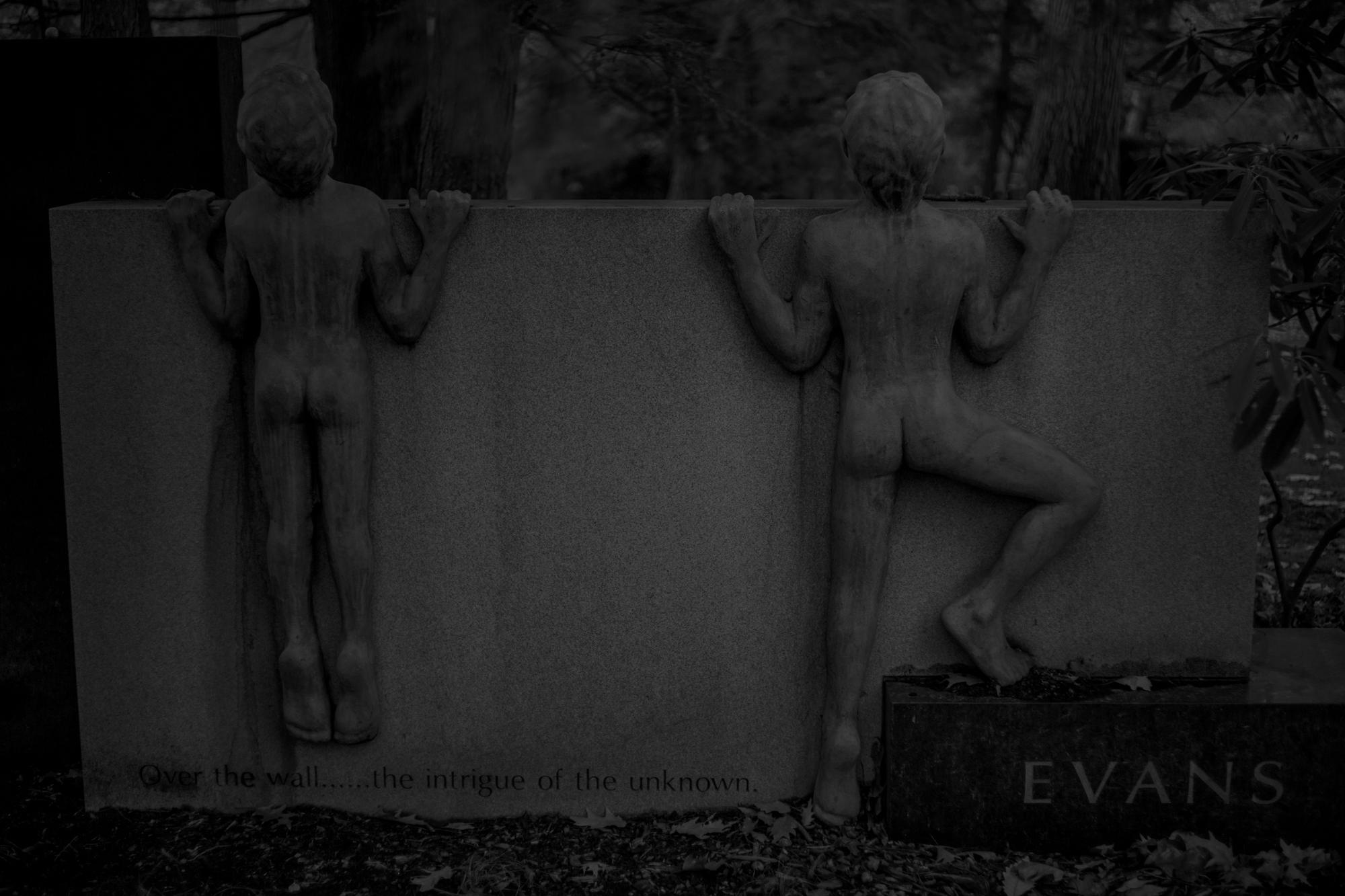 9N6A8712 Evans LP.jpg