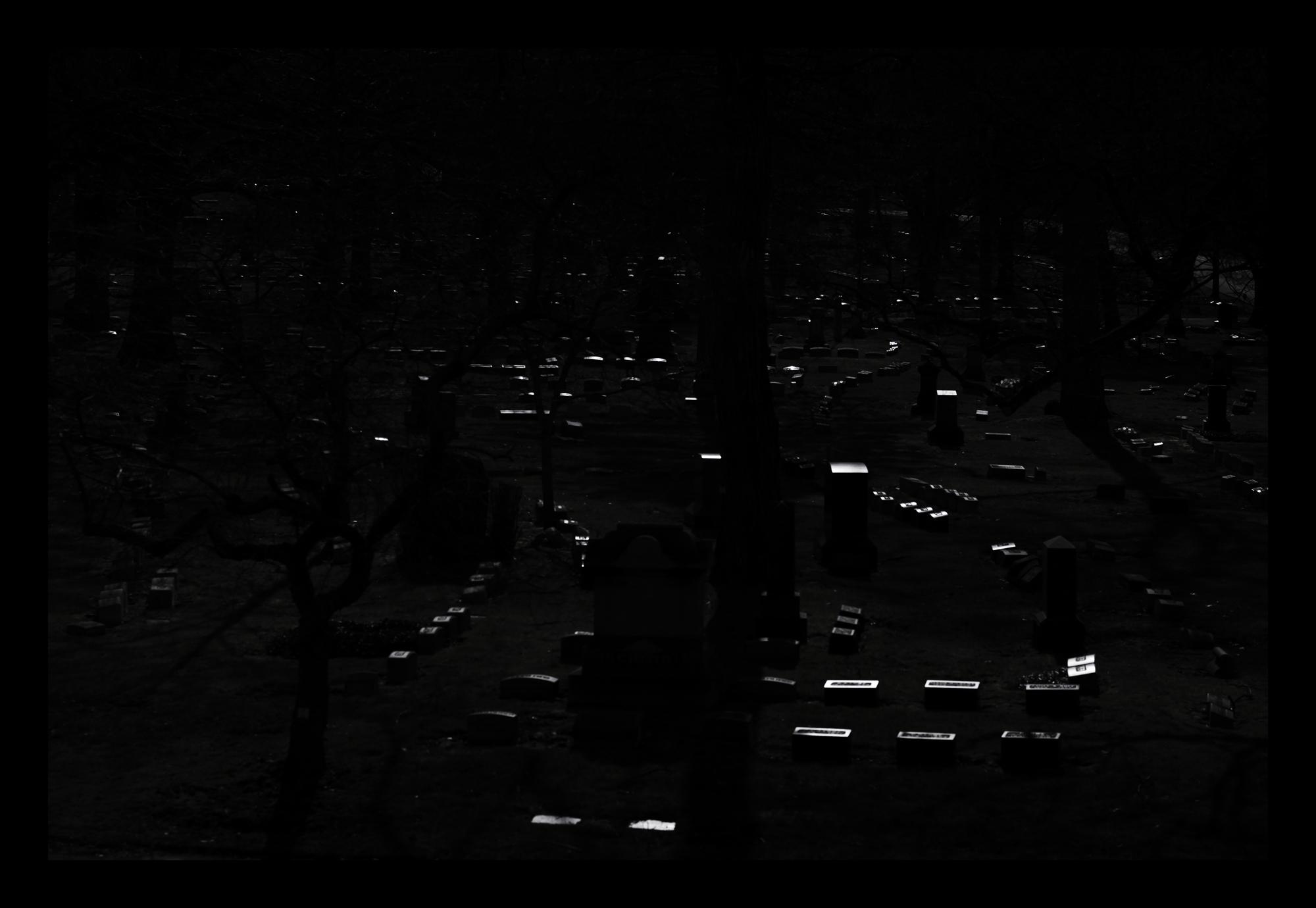 L1006380 Reflective New Light.jpg