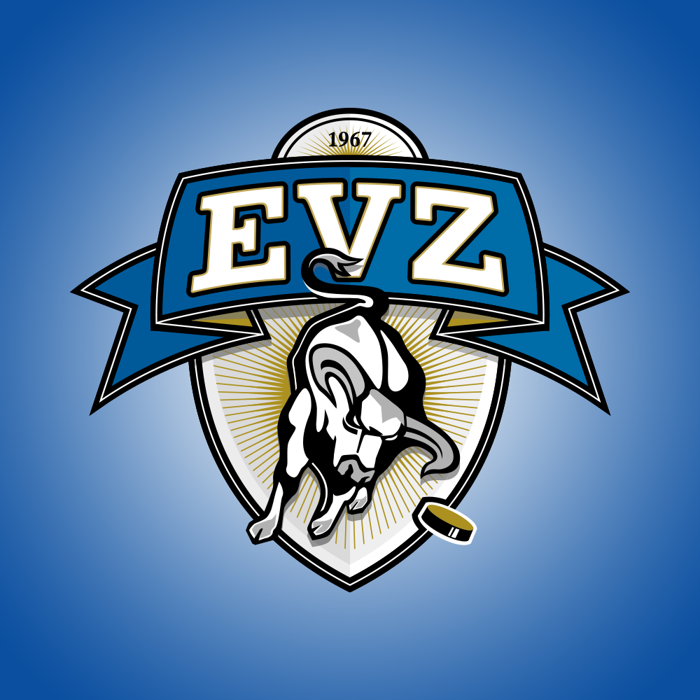 EVZ Onlineshop -