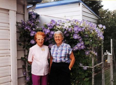 My G. Grandma Home in Casper, Wyoming