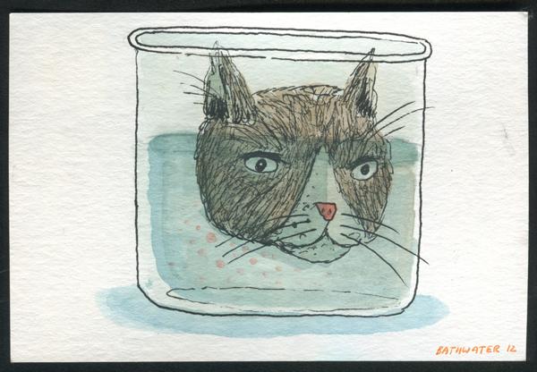 cat-head.png
