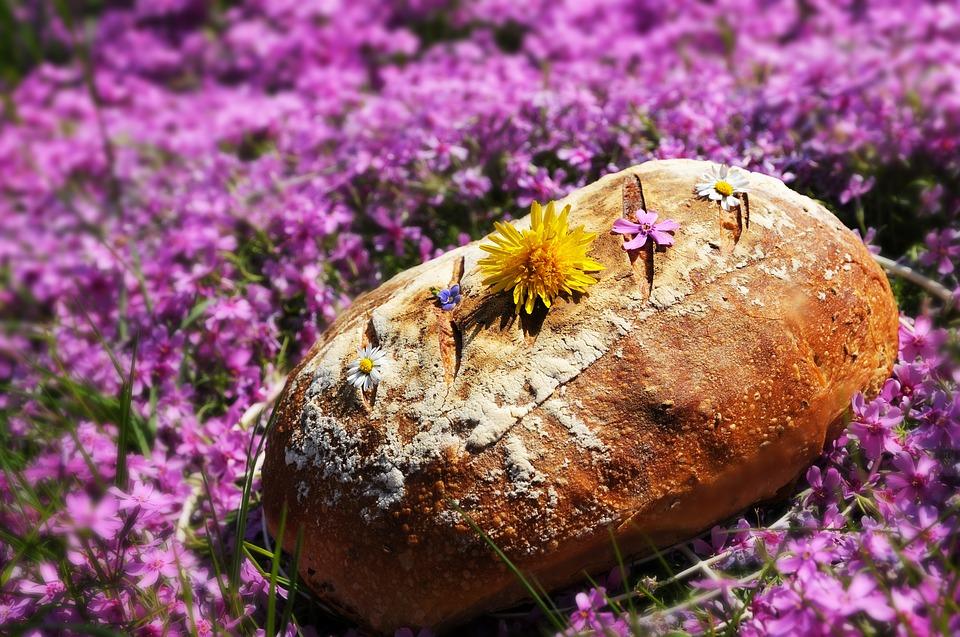 bread-3719658_960_720.jpg