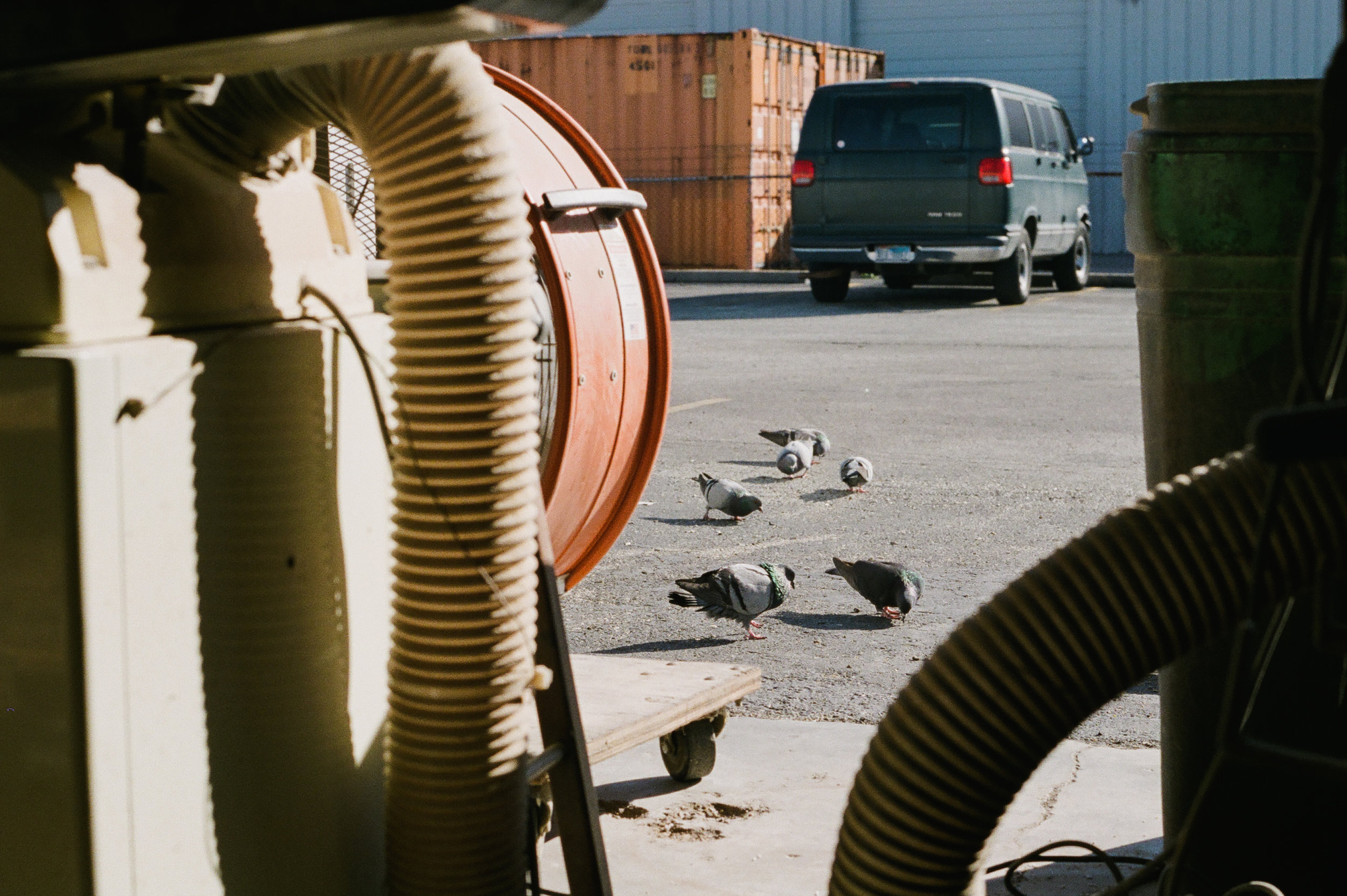Creative-Spaces-Side-Project-Skateboards-Portra-400-004.jpg