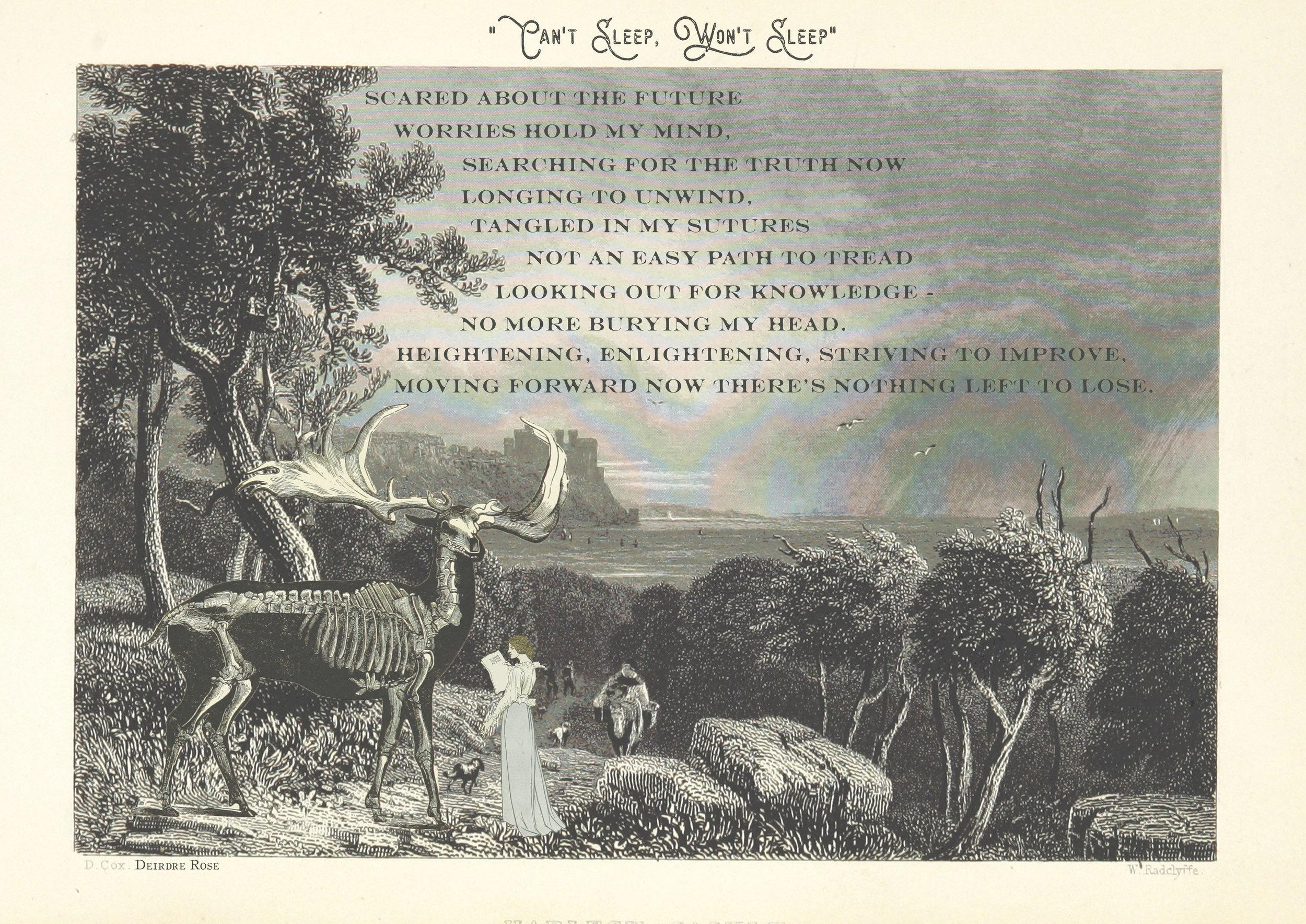 dead elk final.jpg