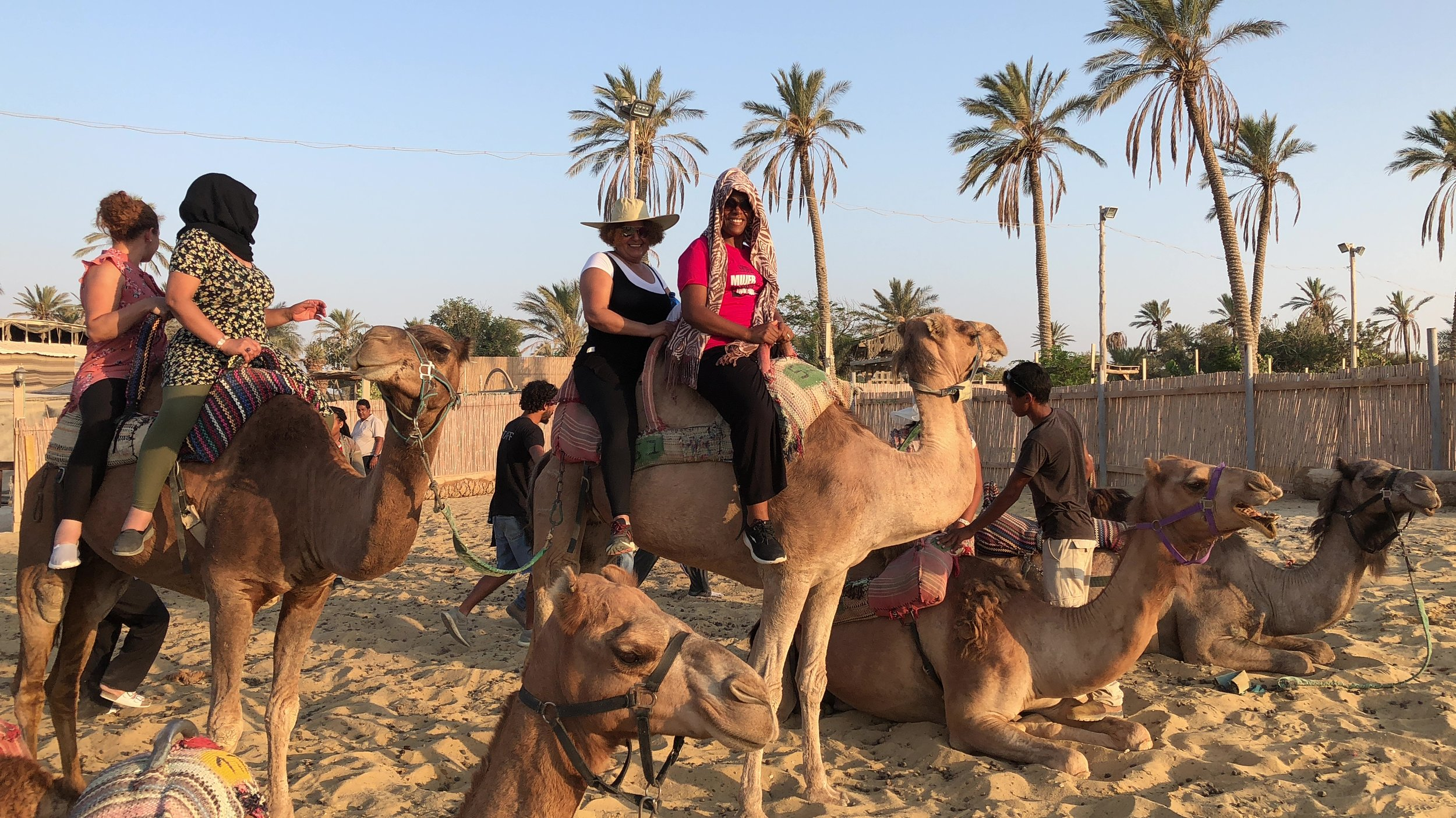 Integrantes de uno de nuestros grupos preparándose para andar en Camello en el Desierto de Judea