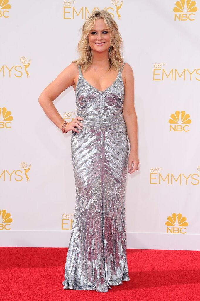 Amy Poehler-Emmy Awards2014-Hires_preview.jpeg