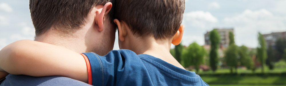 Children Custody Access and Maintenance — Healy Law