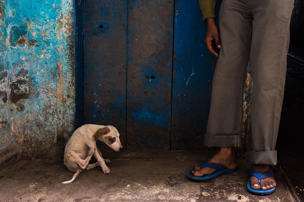 20151121-Varanasi209.jpg