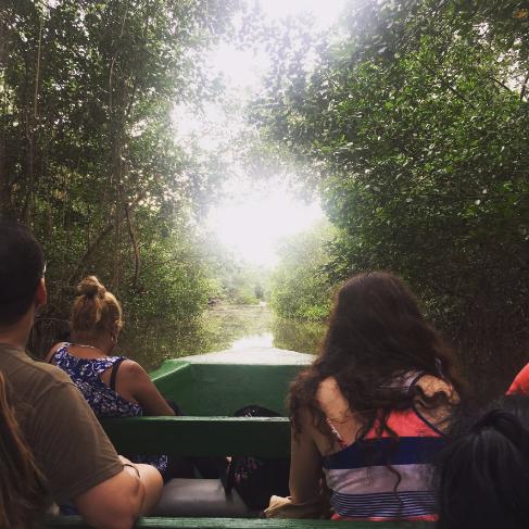 Caroni Bird Sanctuary Swamp Tour