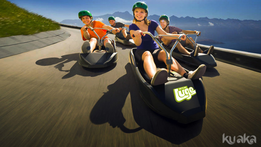 Experience a Skyline Luge ride
