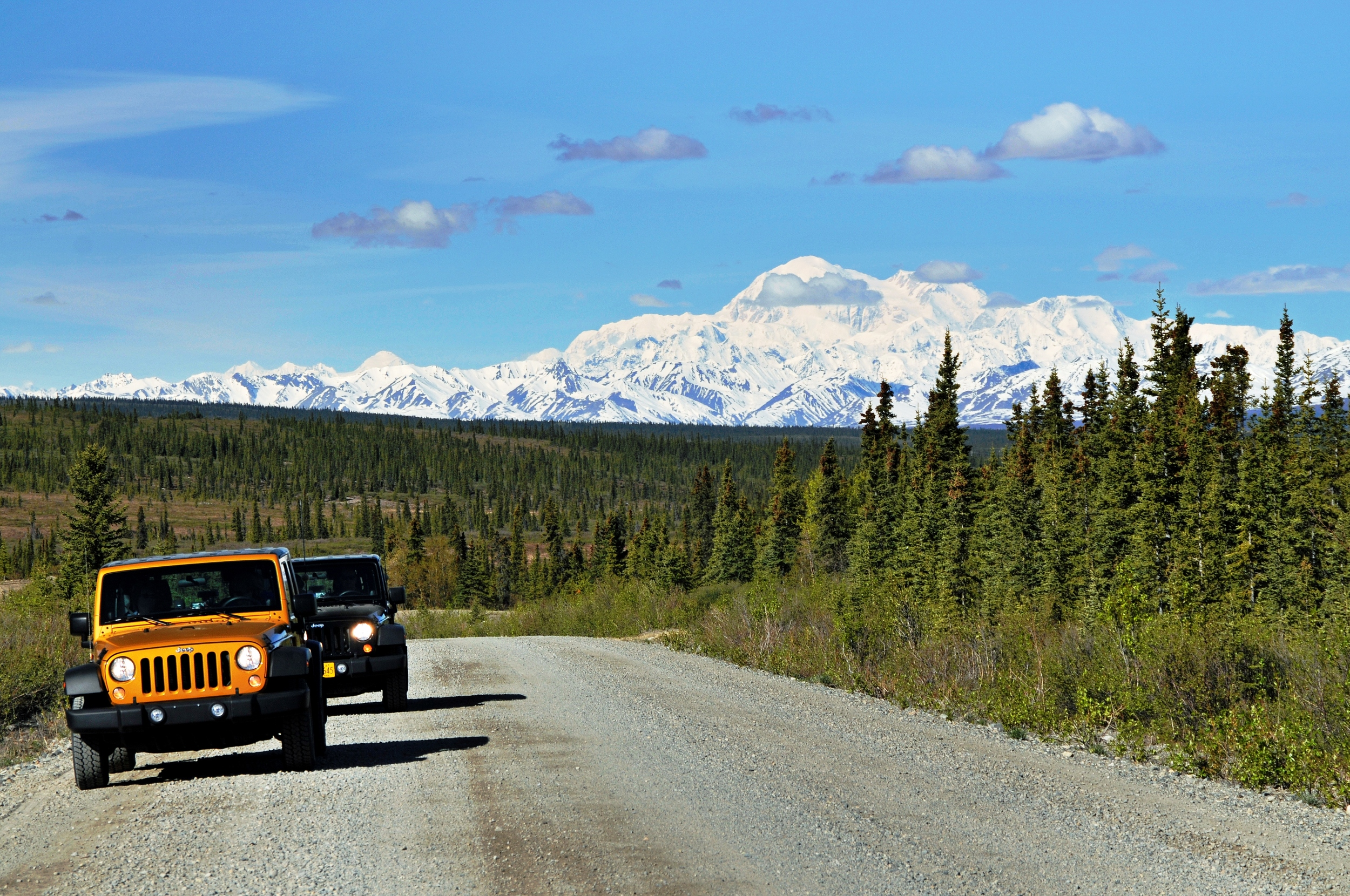 Drive a Jeep on the scenic Denali Highway!
