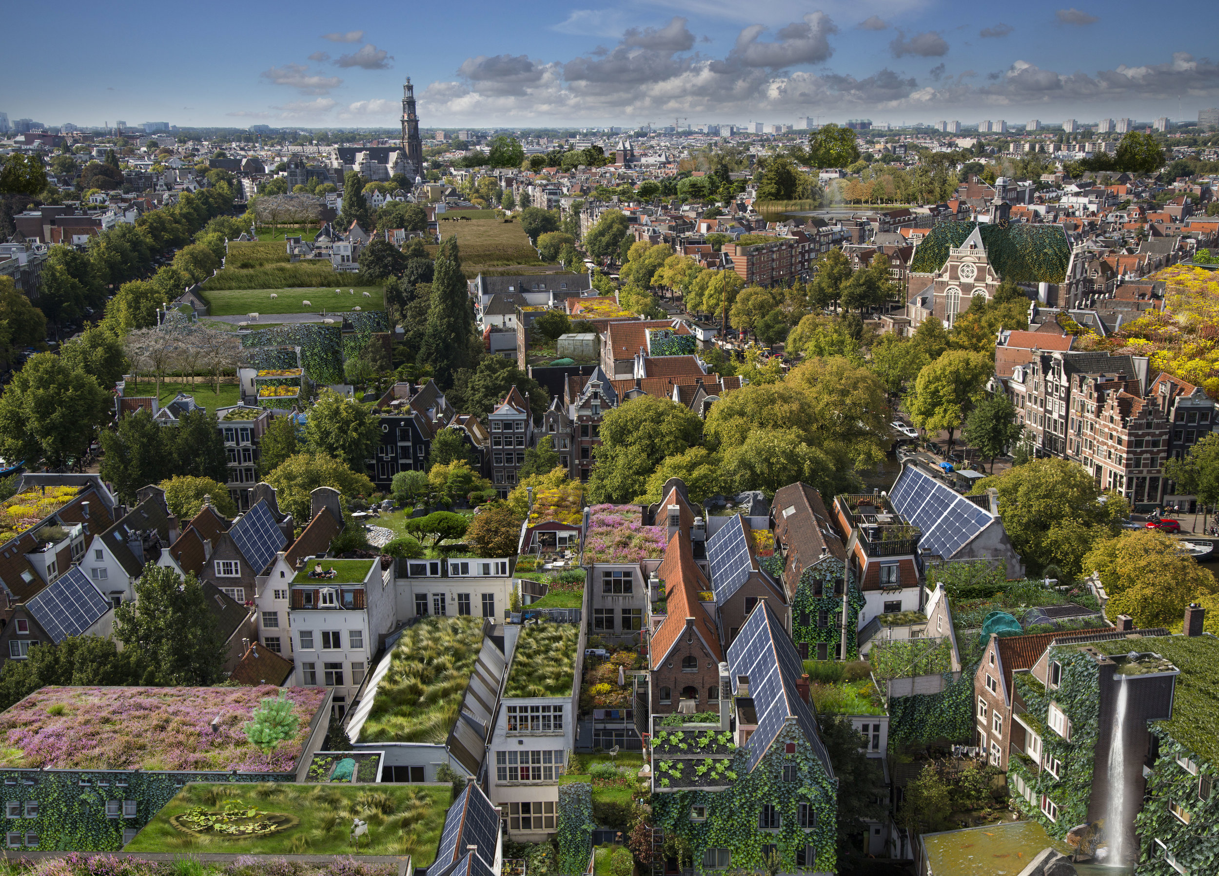 rooftop warriors | AMsterdam - 13.000 km² of roof is undergoing a Rooftop Revolution in the Dutch capital. An interview about the green roofs of the future.by Daan van Kooten