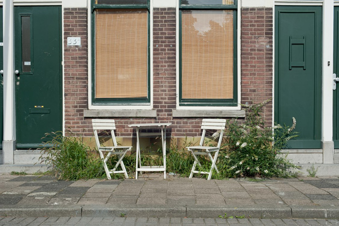 STREET FLORA | ROTTERDAM - When thinking of a city, nature is not the first thing that comes to mind. Jeroen Arians focuses on all the green in between the glass and steel of the city.