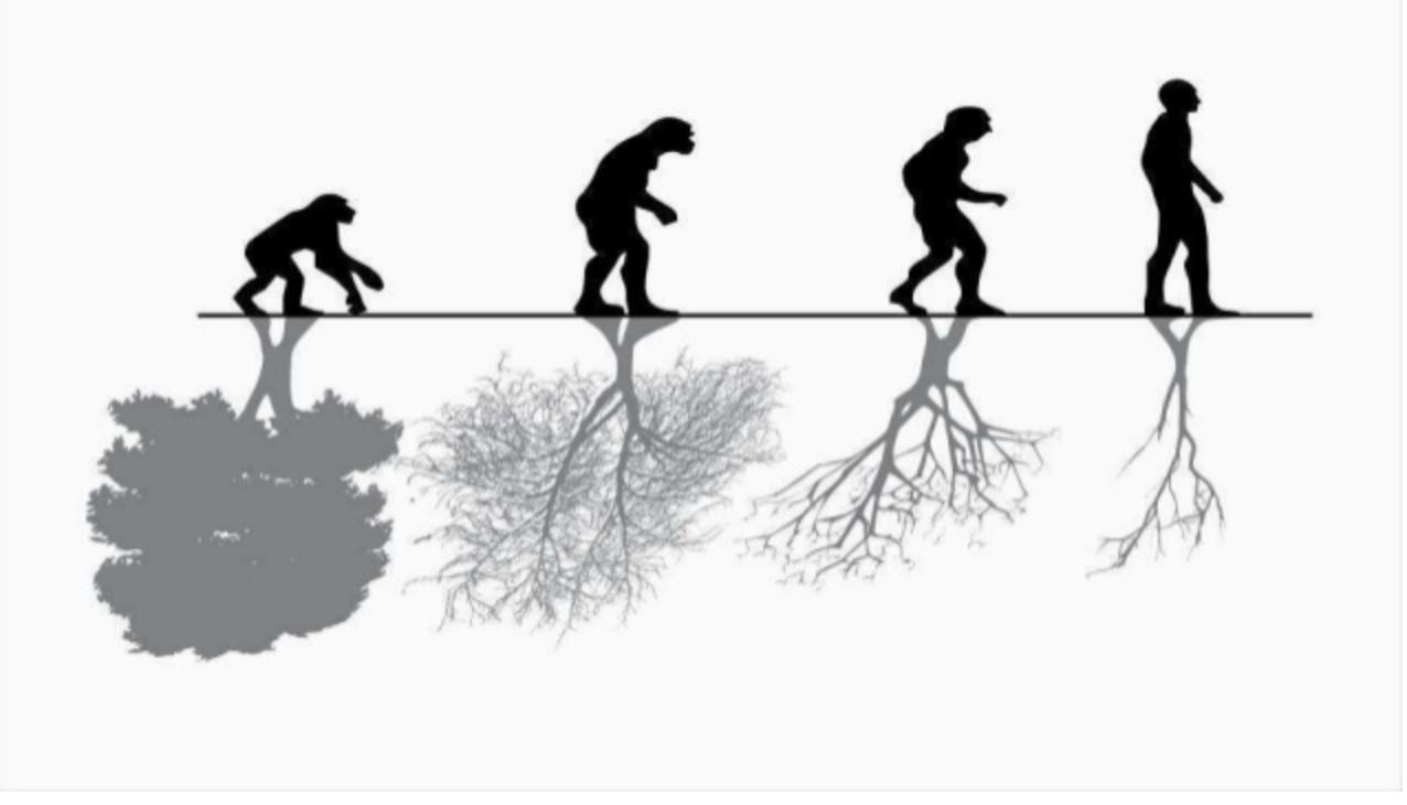 - The Economic Invisibility of Nature. Read more
