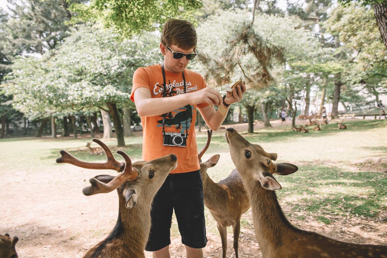 Ryan feeding the deer in Nara