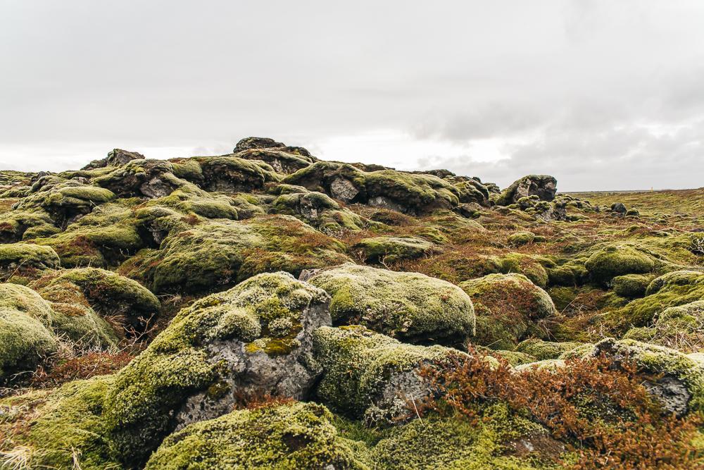 Laki lava fields