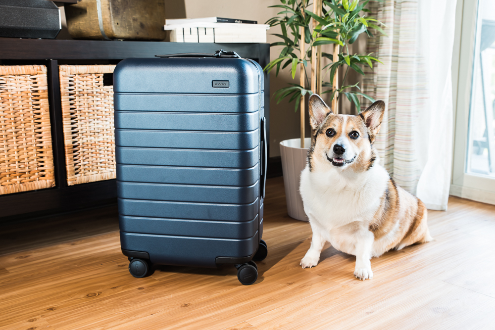 CRYSTAL'S AWAY SUITCASE - approved by Kuma corgi
