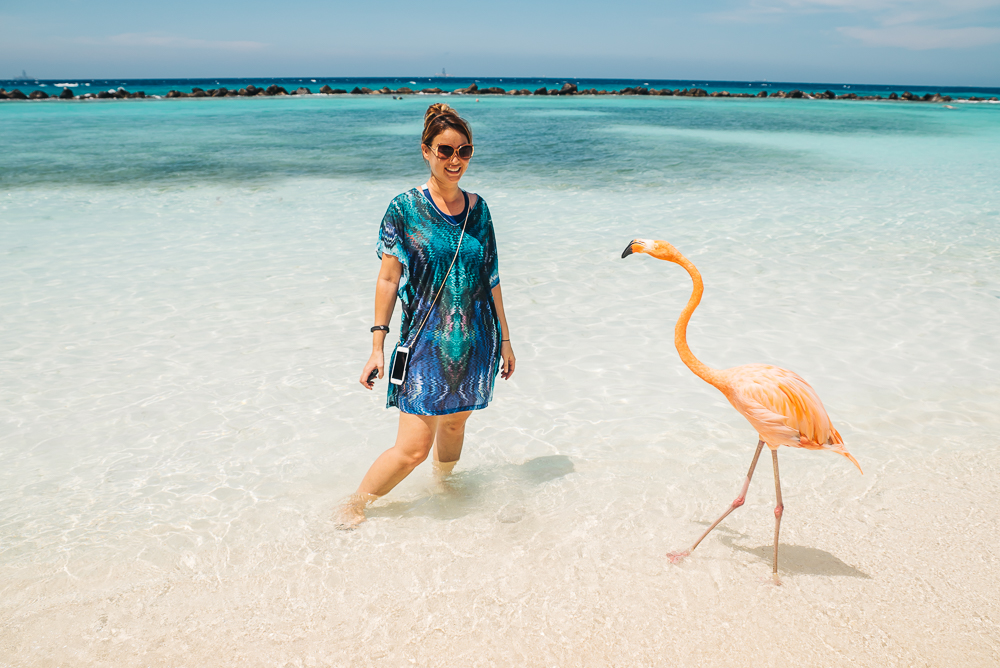 Hangin out with a flamingo in Aruba