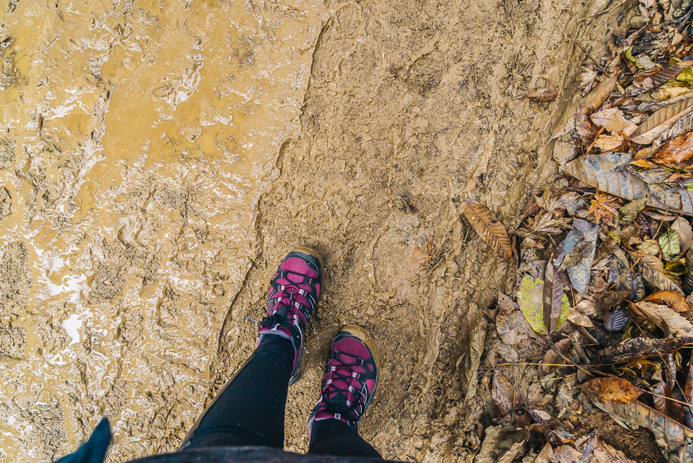 Muddy pathway to the park