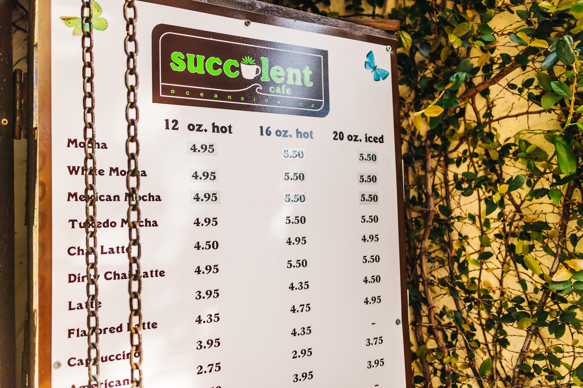 SUCCULENT CAFE + WWW.THETRAVELPOCKETS.COM