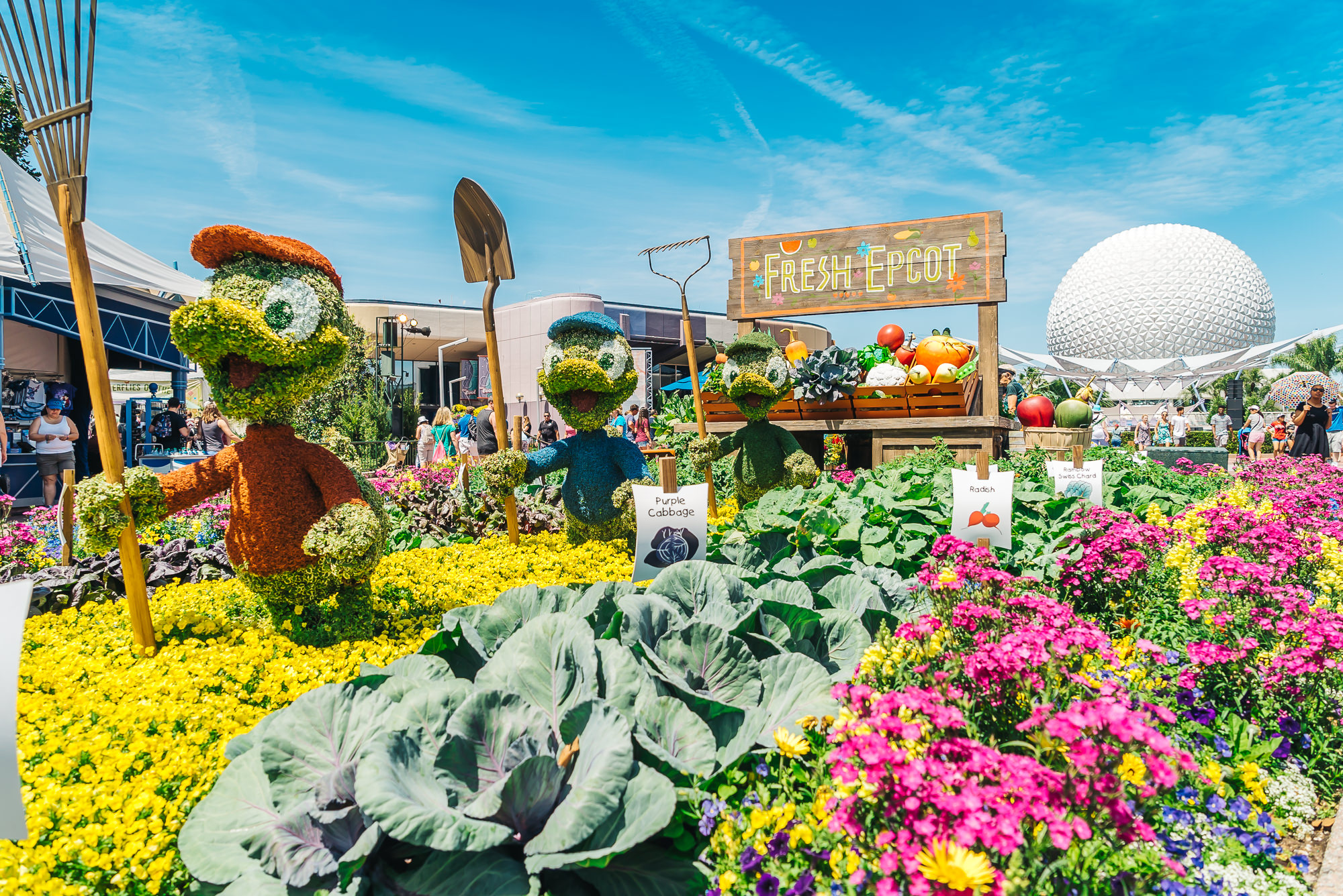 We happened to visit Epcot when the International Flower & Garden Festival was going on