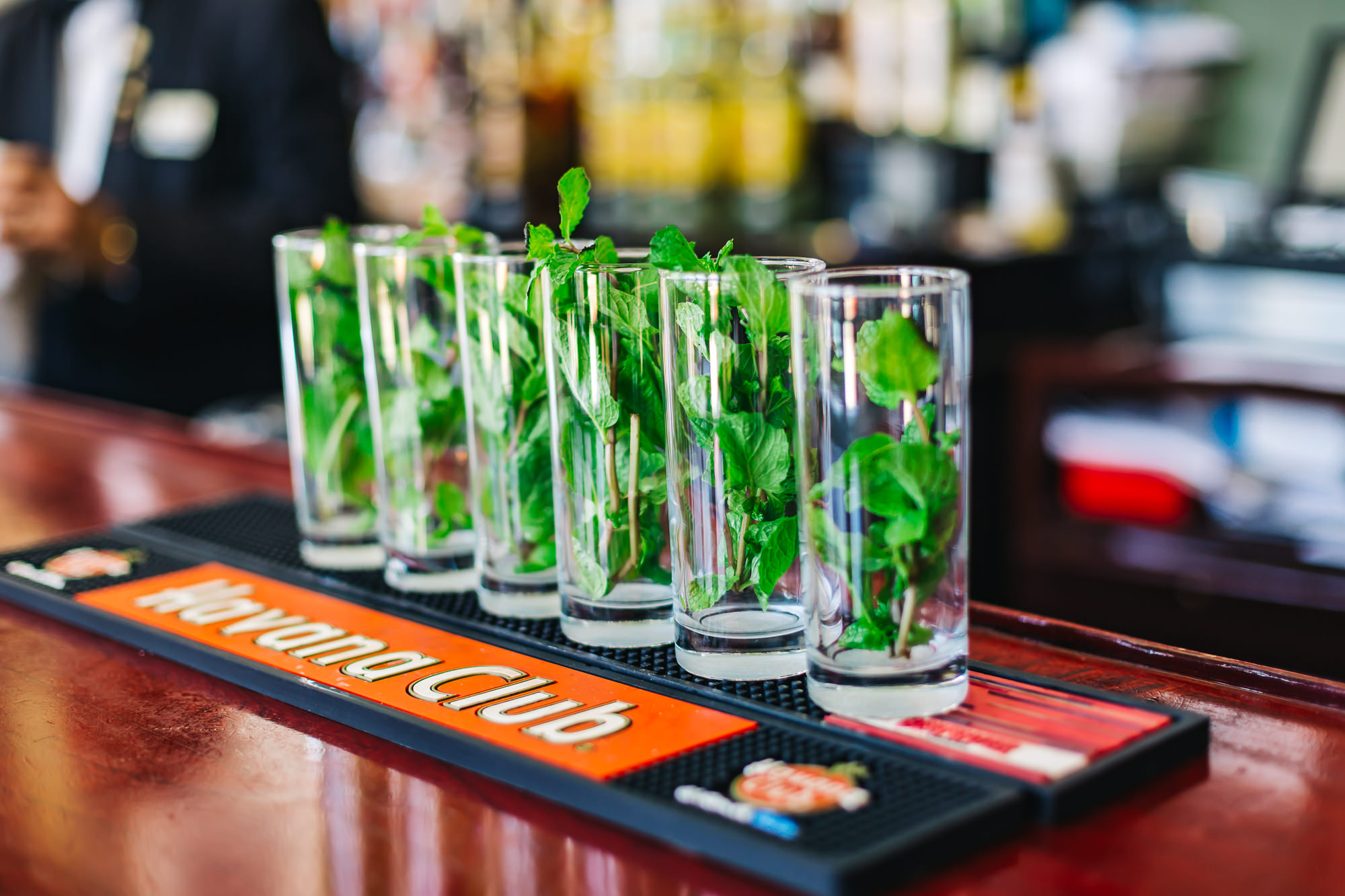 Mojitos are everywhere you go in Havana - they put an entire stem of mint in the cocktail