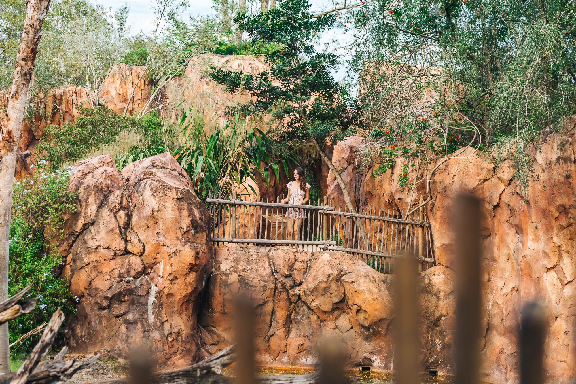 ANIMAL KINGDOM LODGE www.thetravelpockets.com