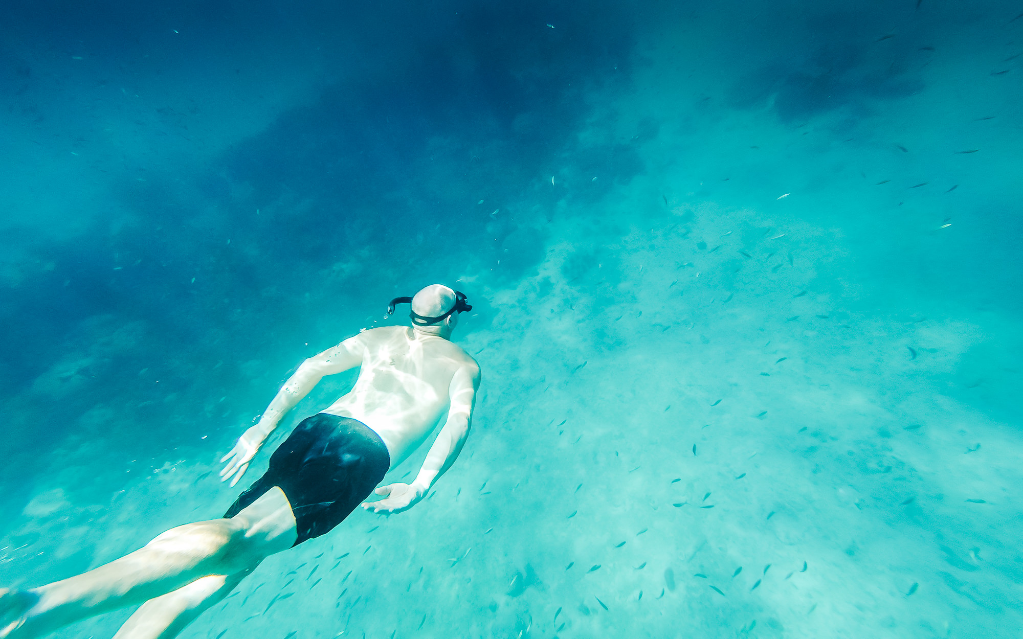 A glimpse of what was underwater at Phi Phi Islands