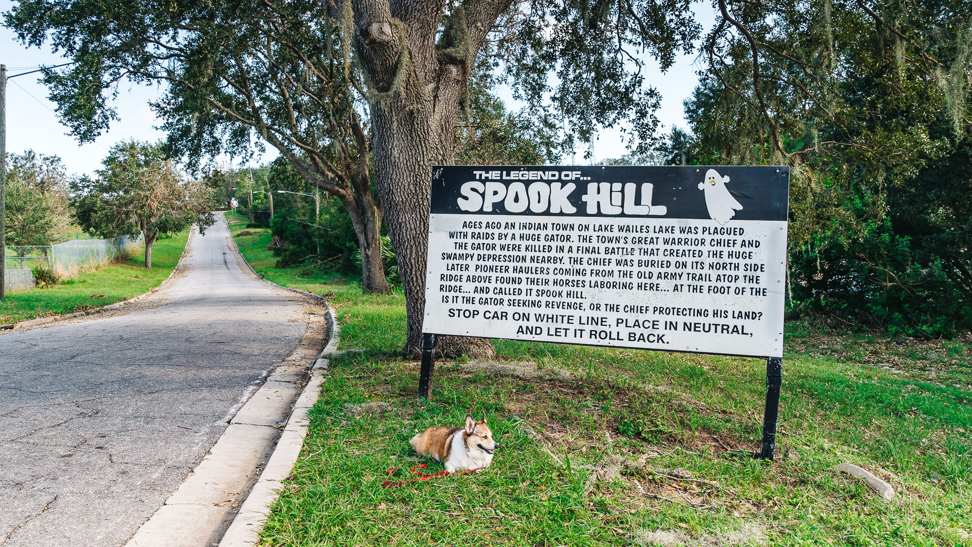 make sure you take a picture with the Spook Hill sign like Miss Kuma