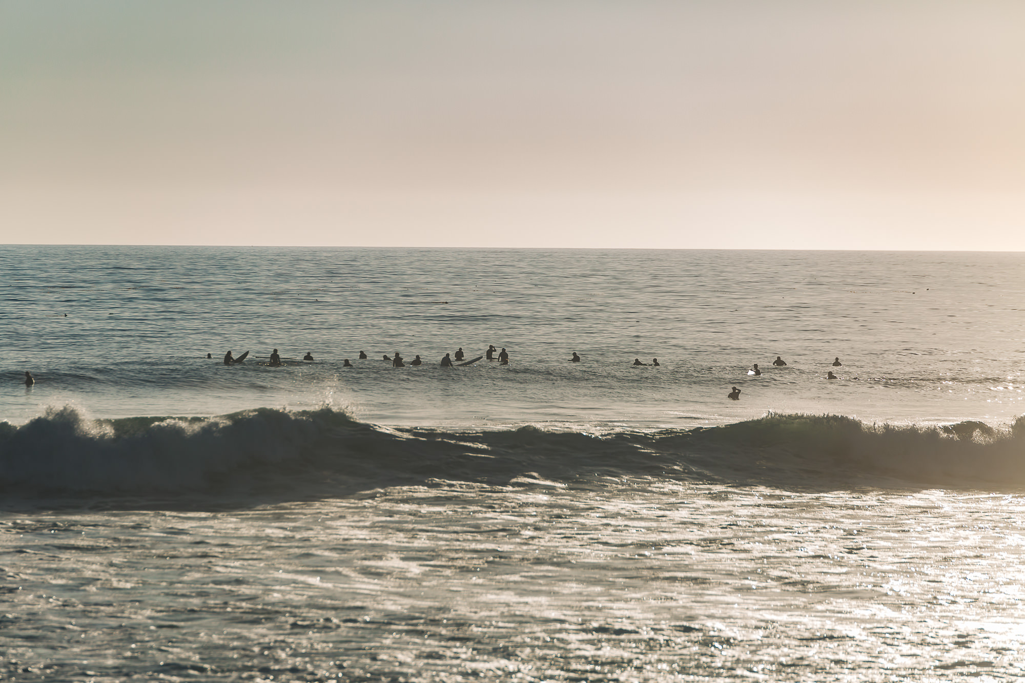 Tons of surfers at WINDANSEA BEACH IN LA JOLLA, CALIFORNIA