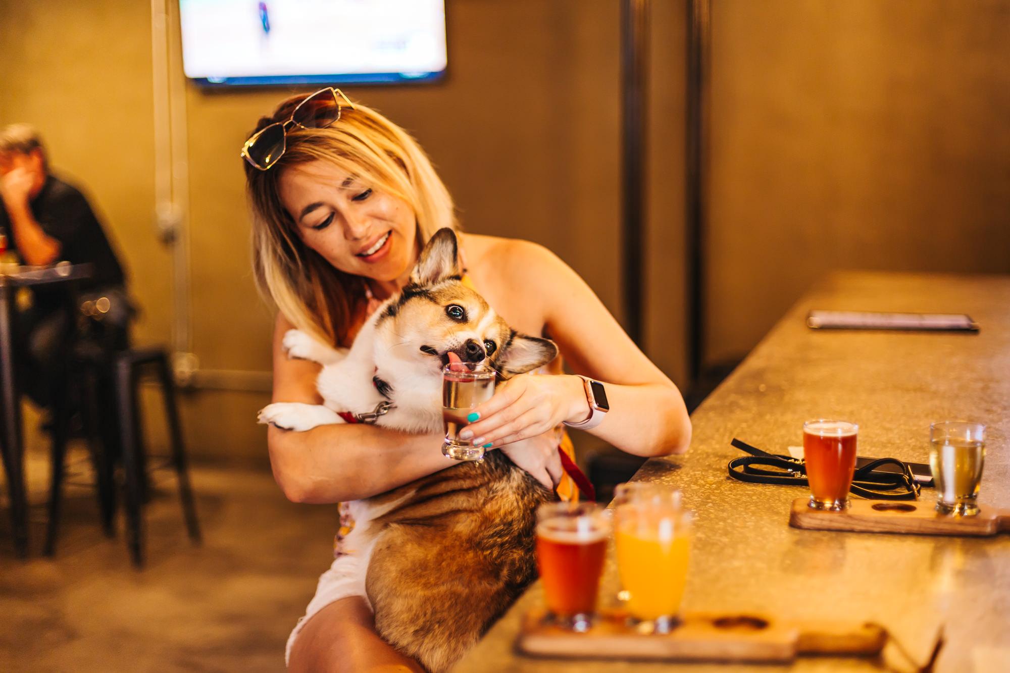 Kuma tested the non-alcoholic drinks