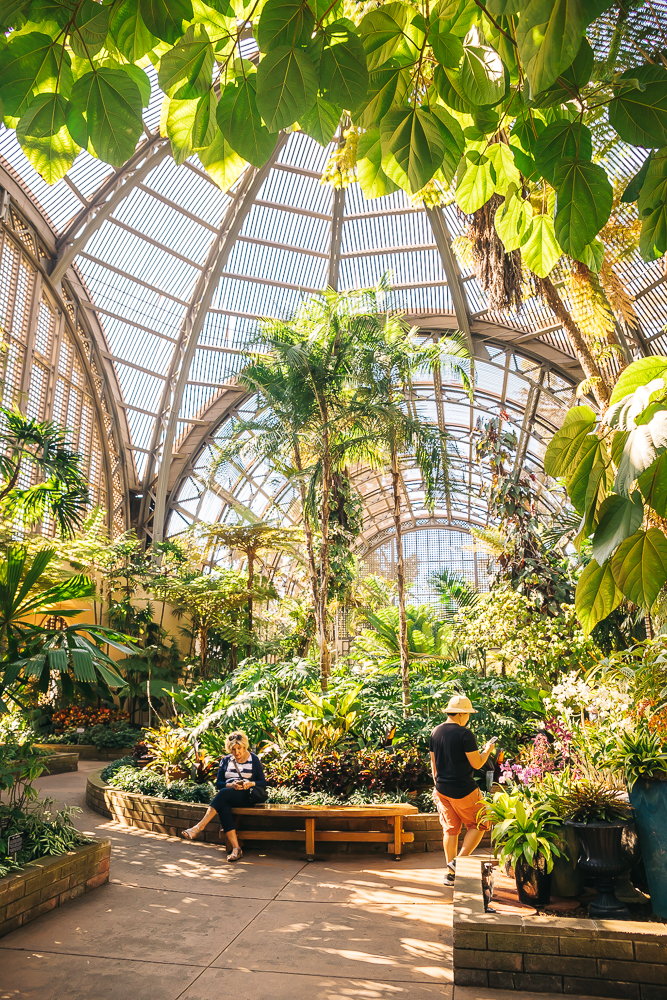 Botanical garden Balboa Park