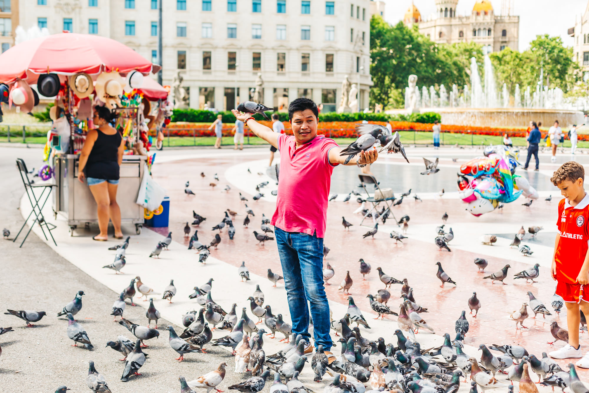 Hundreds of pigeons at Placa de Catalunya