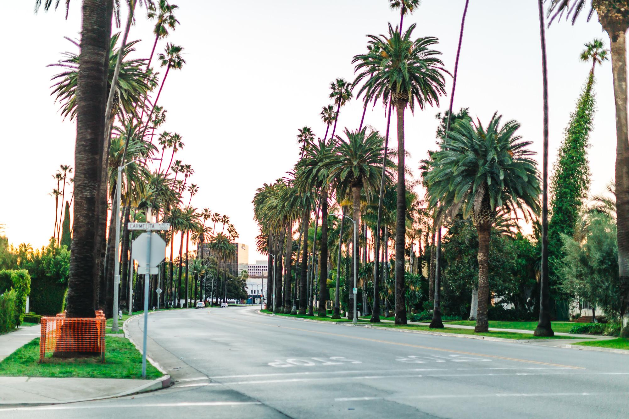N. Beverly Drive + Carmelita Way