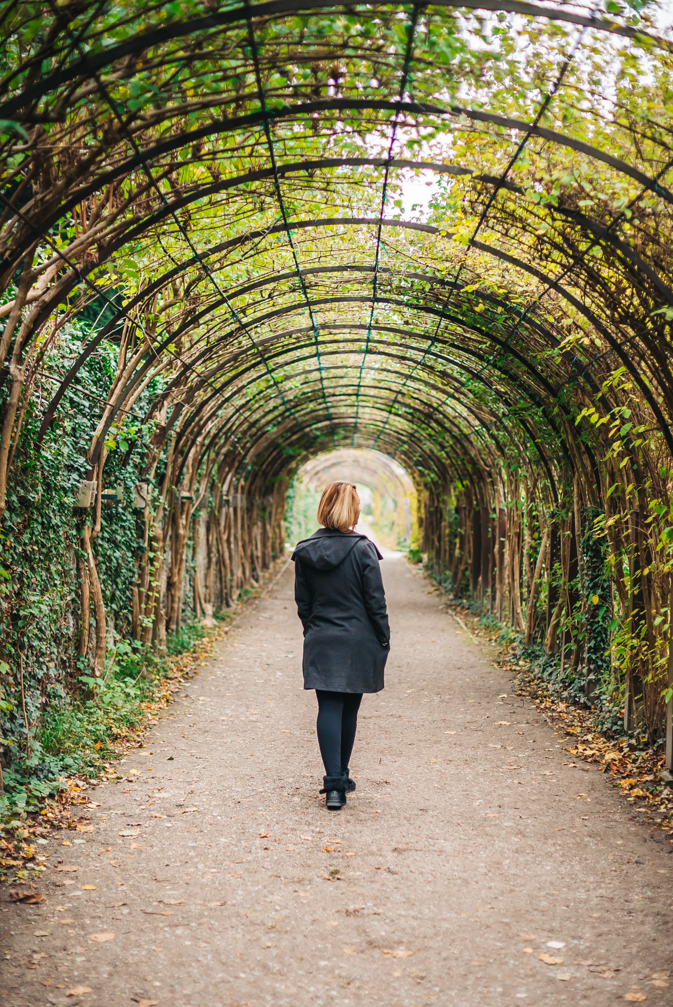 The garden tunnel Maria and the kids ran through in  the   Sound of Music
