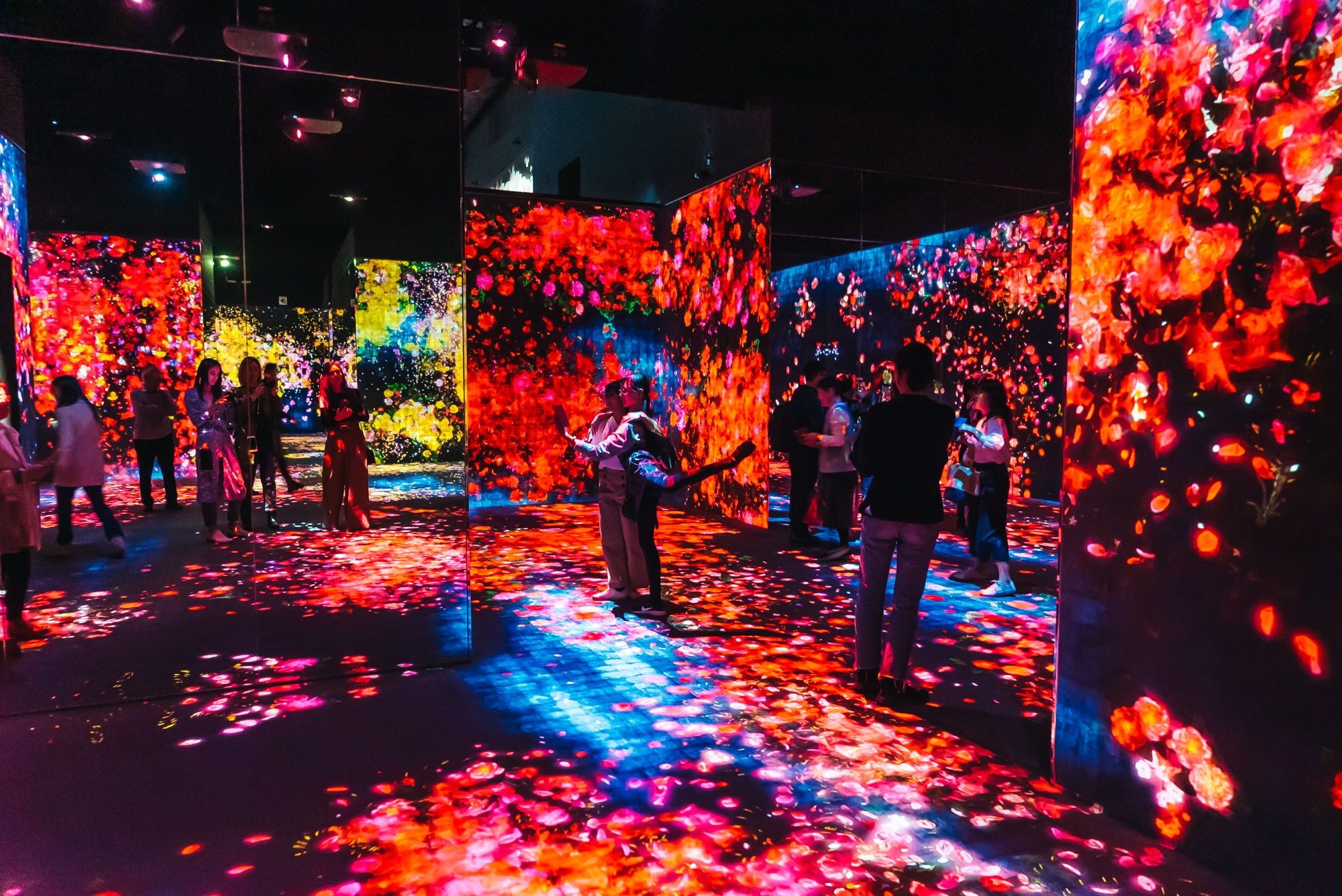 Forest of Flowers and People: Lost, Immersed and Reborn