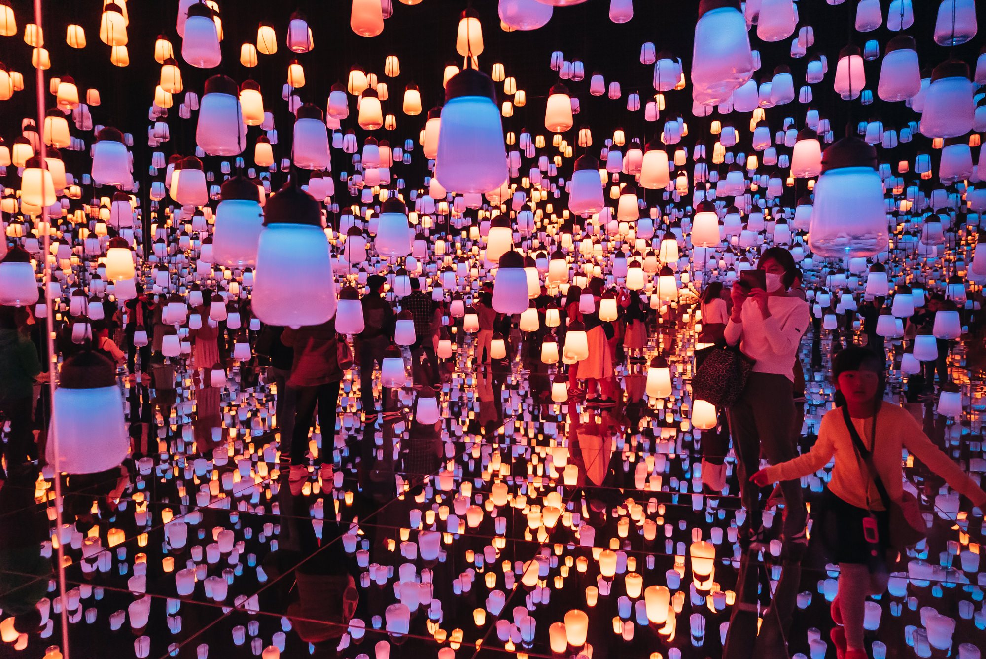 Forest of Lamps