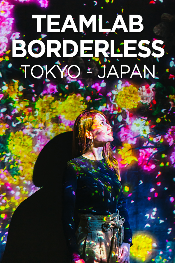 teamLab Borderless #Tokyo #Japan #digitalmuseum