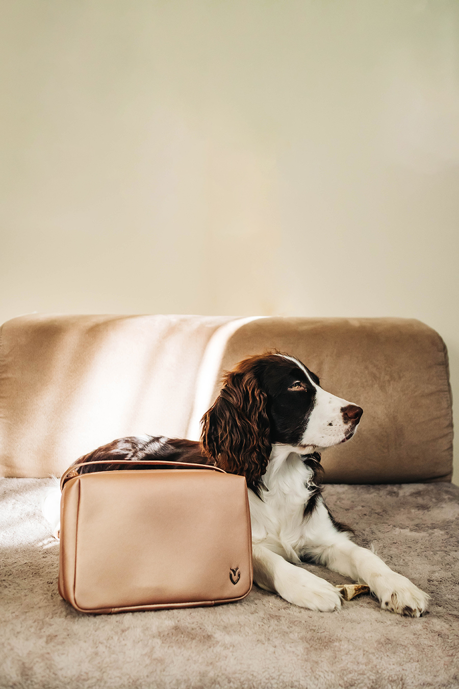 my pup Zooey posing with the Signature 2.0 Toiletry Bag