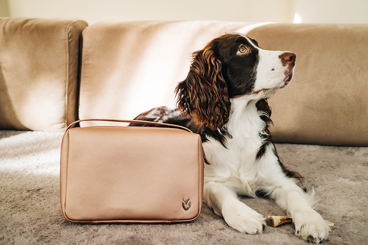 my pup Zooey posing with the Signature 2.0 Toiletry Bag in rose gold.