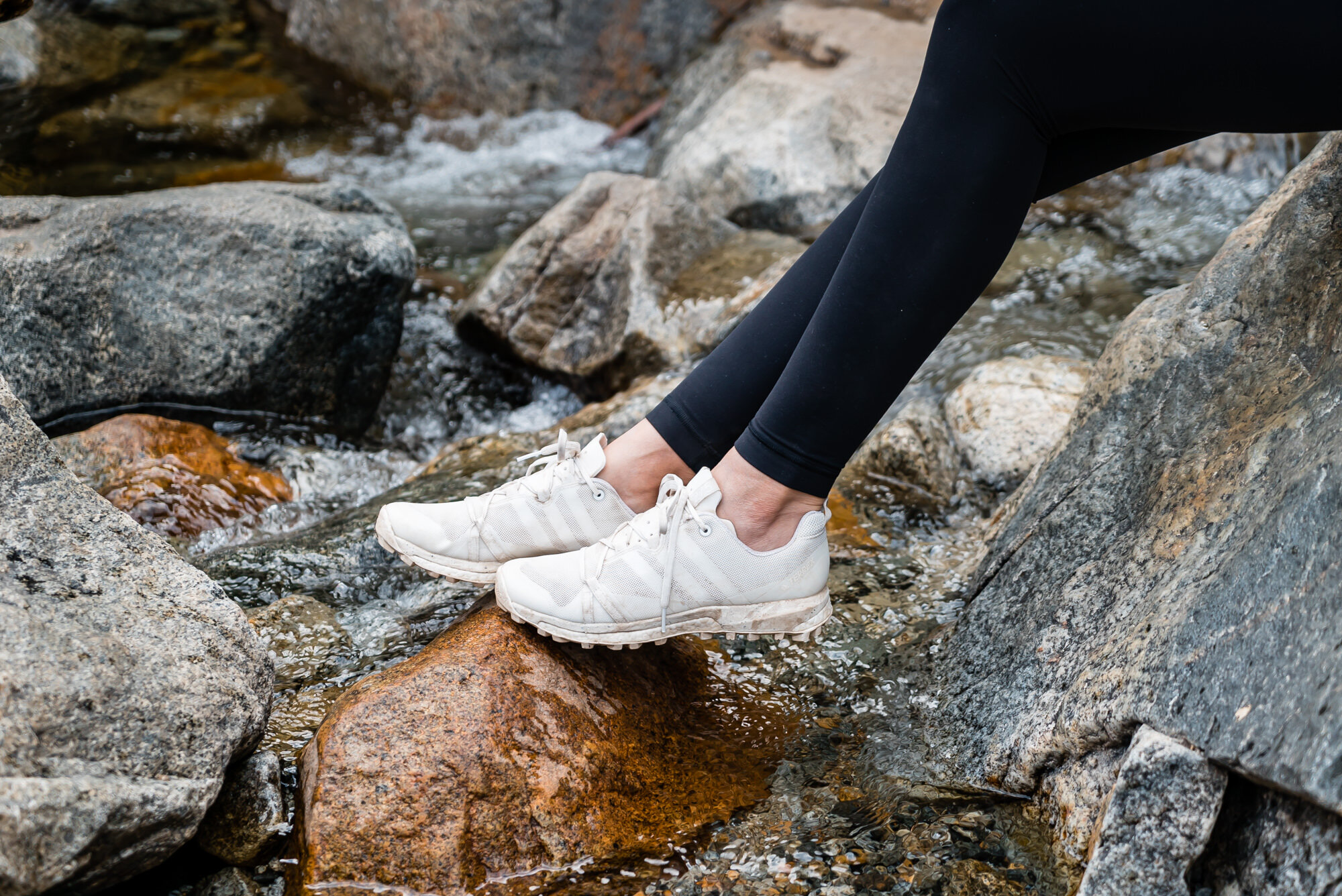 adidas Outdoor   TERREX SPEED TRAIL   running shoes