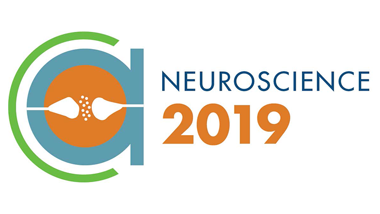 The Society for Neuroscience (SfN) is a professional society, headquartered in Washington, DC, for basic scientists and physicians around the world whose research is focused on the study of the brain and nervous system It is especially well known for its annual meeting, consistently one of the largest scientific conferences in the world!   https://www.sfn.org/