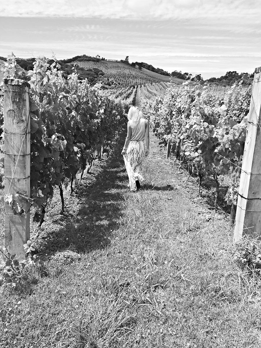 JAN | Summer vining & dining on Waiheke