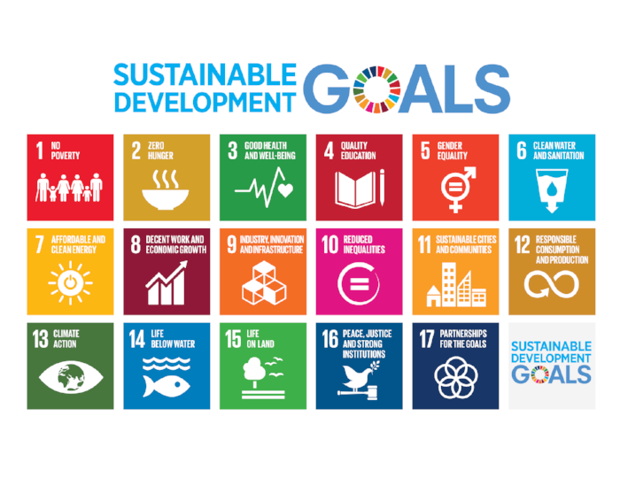 2015's Sustainable Development Goals.  In an attempt to clarify the goals, and make them more achievable, there are 169 targets within these 17 goals!