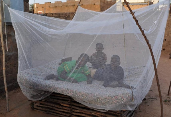 Between 2008 and 2010, a total of 294 million nets were distributed in sub-Saharan Africa. Insecticide treated nets have been shown to reduce the death of children under 5 years from all causes by about 20%. (CDC)
