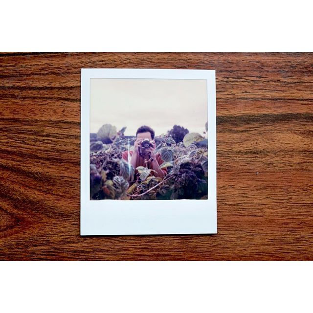 @polaroidoriginals #sx70film