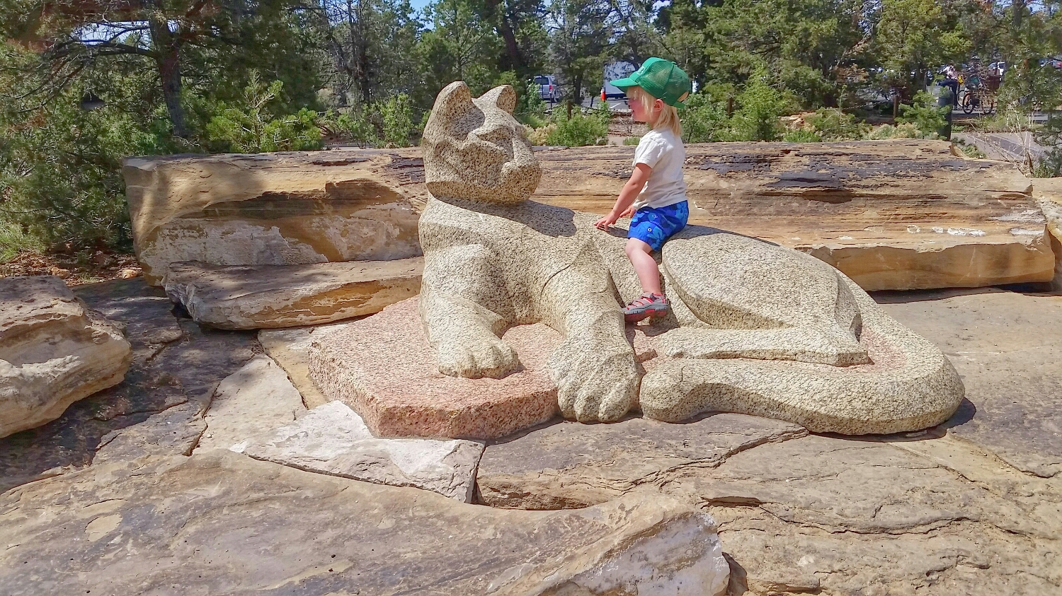 Outside of the main  Visitor Center  - he loved this mountain lion!